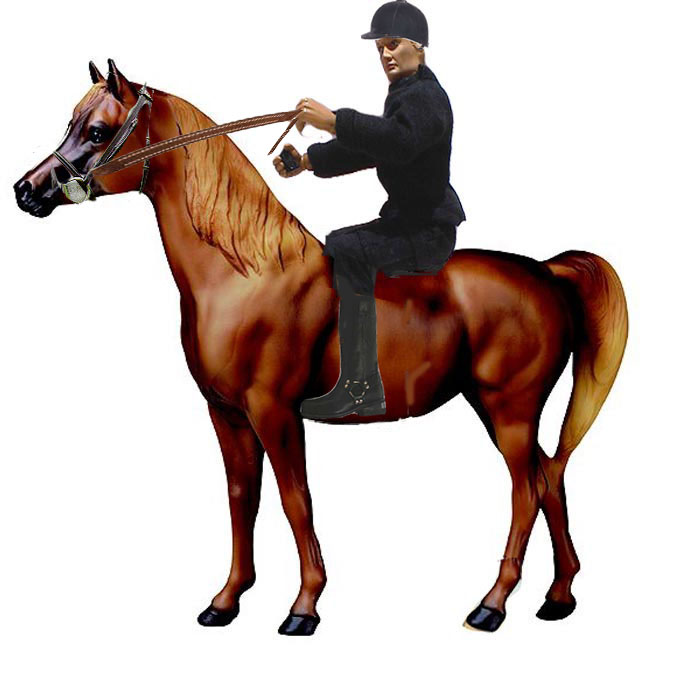 Ik joins the horsey set